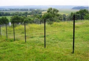Забор из сетки рабицы для дачи фото