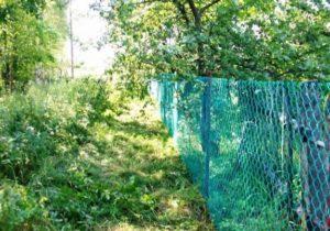 Забор из сетки-рабицы внатяг фото